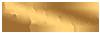 LionNet - Strony internetowe, Hosting, SEO